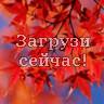 Ветка красных листьев