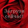 Роза в капельках росы