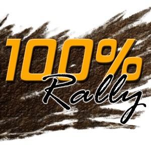 java игра 100% Rally