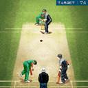 java игра Профессиональный Крикет