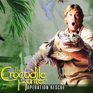 java игра Охотник на крокодилов