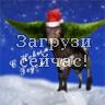 С Новым Годом! Годом быка!