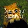 SHREK 3 Кот